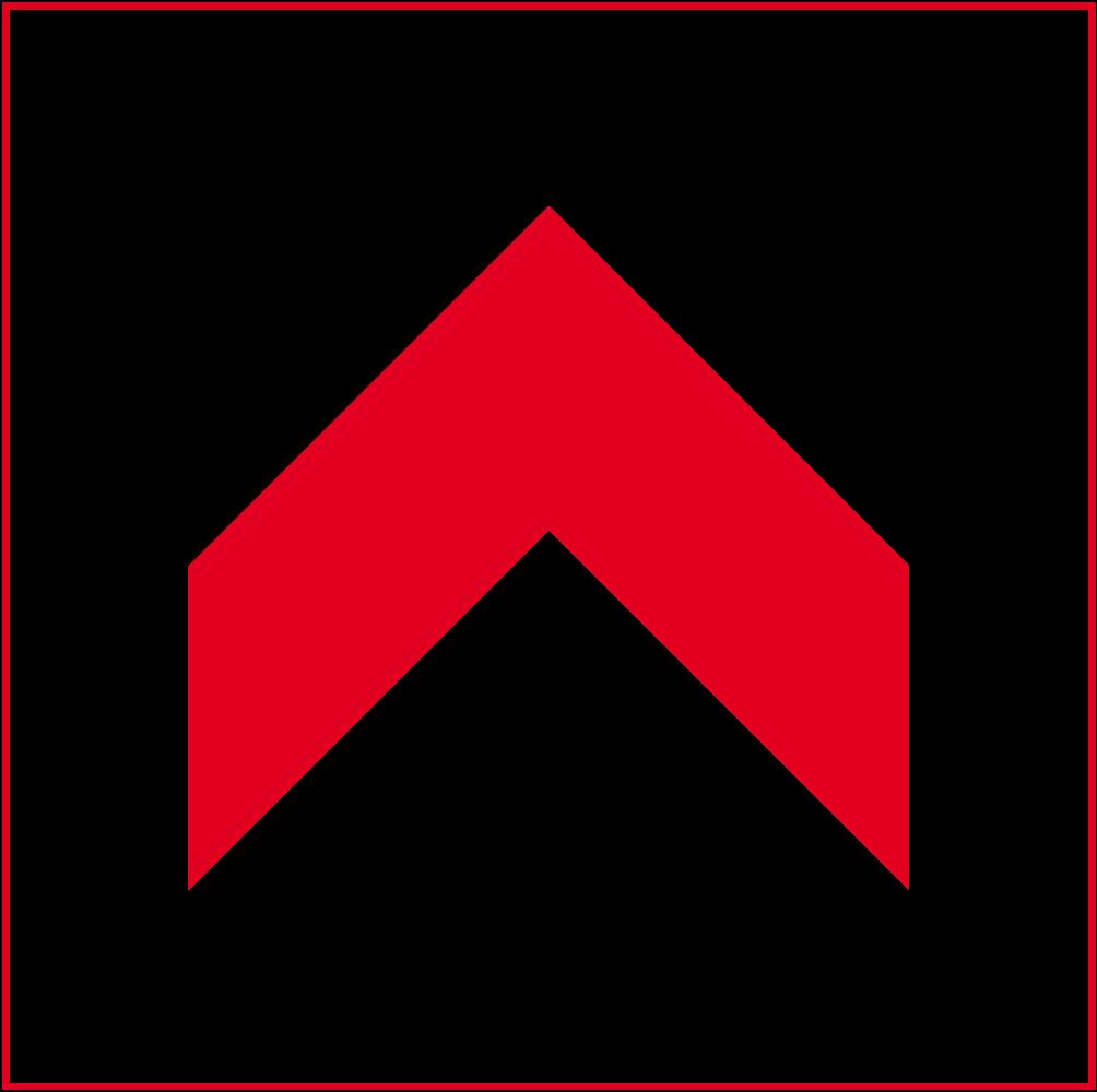 Icon Steildach
